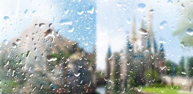 【台風19号】10/12(土)終日休園決定!台風のディズニーは中止になる?アトラクション・ショーパレード・持ち物・メリットまとめ!
