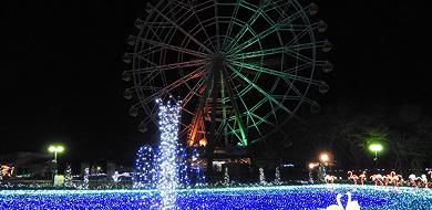 【2018-2019】東武動物公園のイルミネーション料金&期間!無料日あり!アクセス&混雑まとめ!