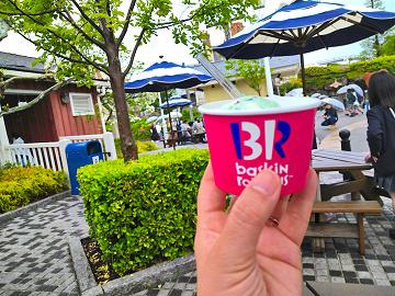 【2019】ユニバのアイスの種類&販売場所は?ミニオン・サーティワン・ピンクサンデー・バタービール味も