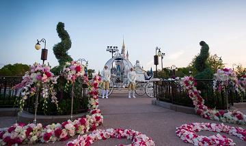 世界のフェアリーテイルウェディングの基本情報・費用・おすすめポイントまとめ!海外ディズニーで結婚式を!