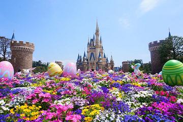 【必見】花を楽しむことができるテーマパーク10選!全国のおすすめフラワーパークまとめ!
