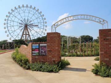 【必見】東武動物公園のチケット割引購入法は?コンビニの前売りが安い!アクセス情報も!