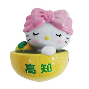 ゆず風呂(高知県)