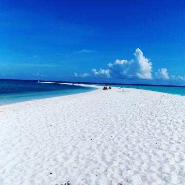 【セブ島】本当は教えたくないモアルボアルの魅力!隠れ家ビーチ、ウミガメ、ツアー情報も